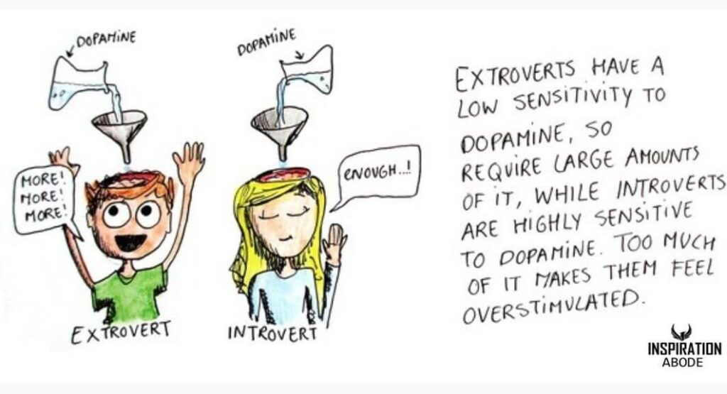 why introverts are different