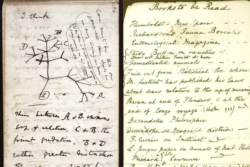 Charles Darwin personal diary and journal