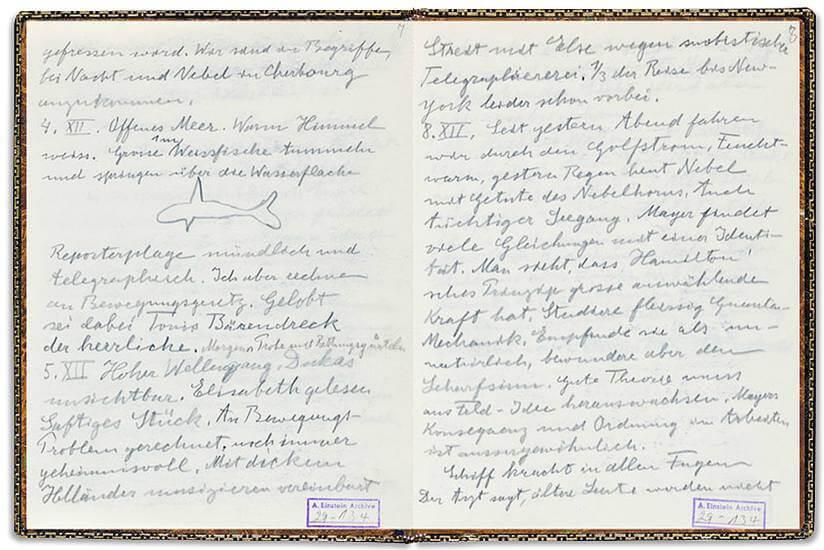 Albert Einstein  personal diary and journal